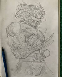 Wolverine Aoa 11 06 21