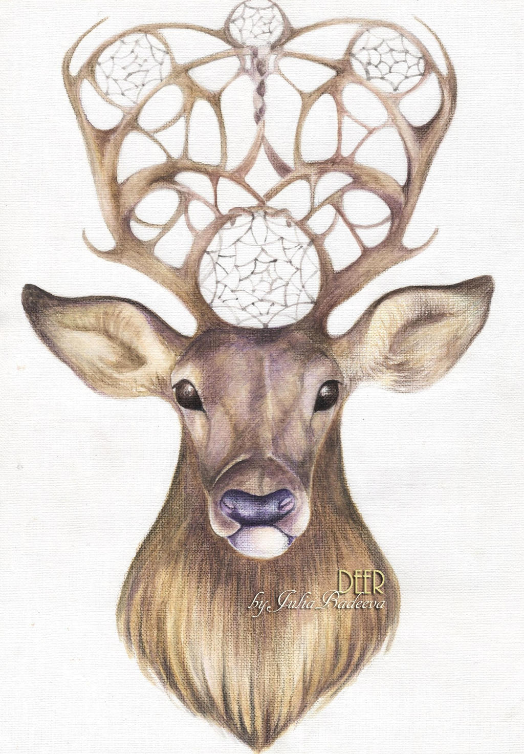 deer drawings - photo #22