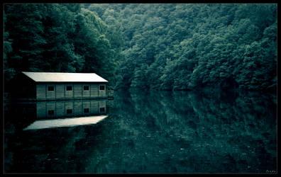 Lake house by zardo