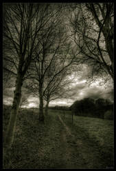 On the road of perdition by zardo