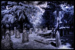 Eternity dust
