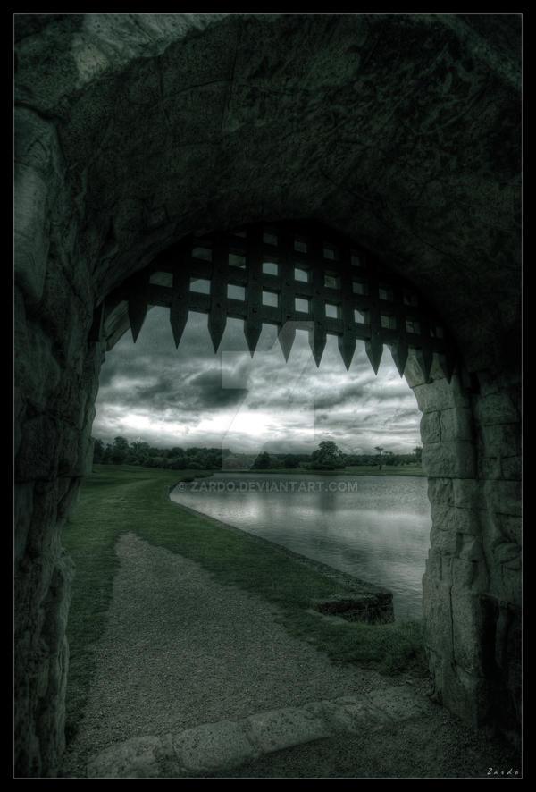 Dark knights by zardo