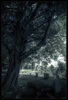 Death rest by zardo