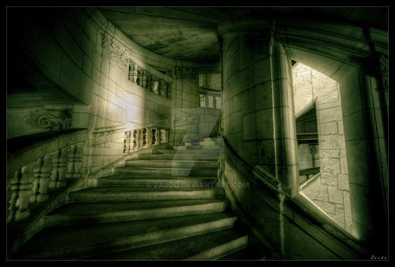 Dark lights by zardo