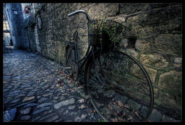 Cycles of time by zardo