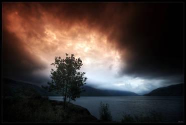 Nature strength by zardo