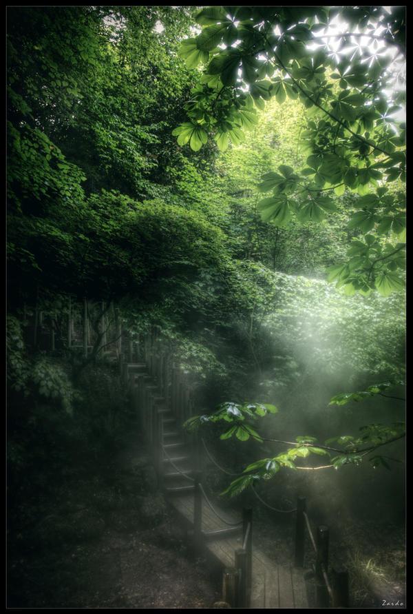 Road of mystery by zardo