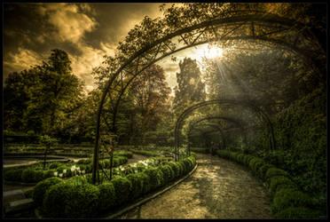 Garden of white rabbit by zardo