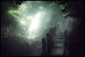 Dance of light by zardo
