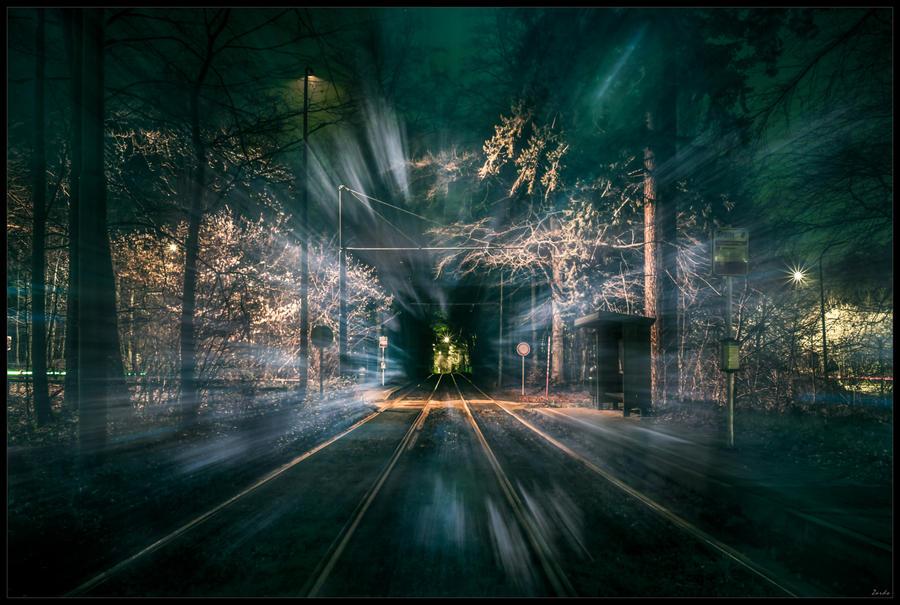 Forest station by zardo