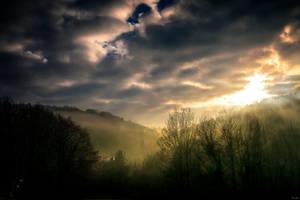 Misty morning by zardo