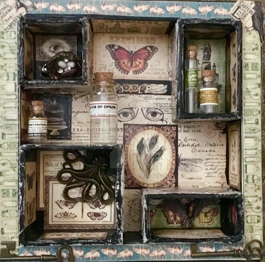 Unusual Oddities Curiosity Shoppe by CarlieMSorat