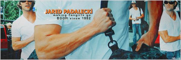 jared padalecki's arms by SavingMel