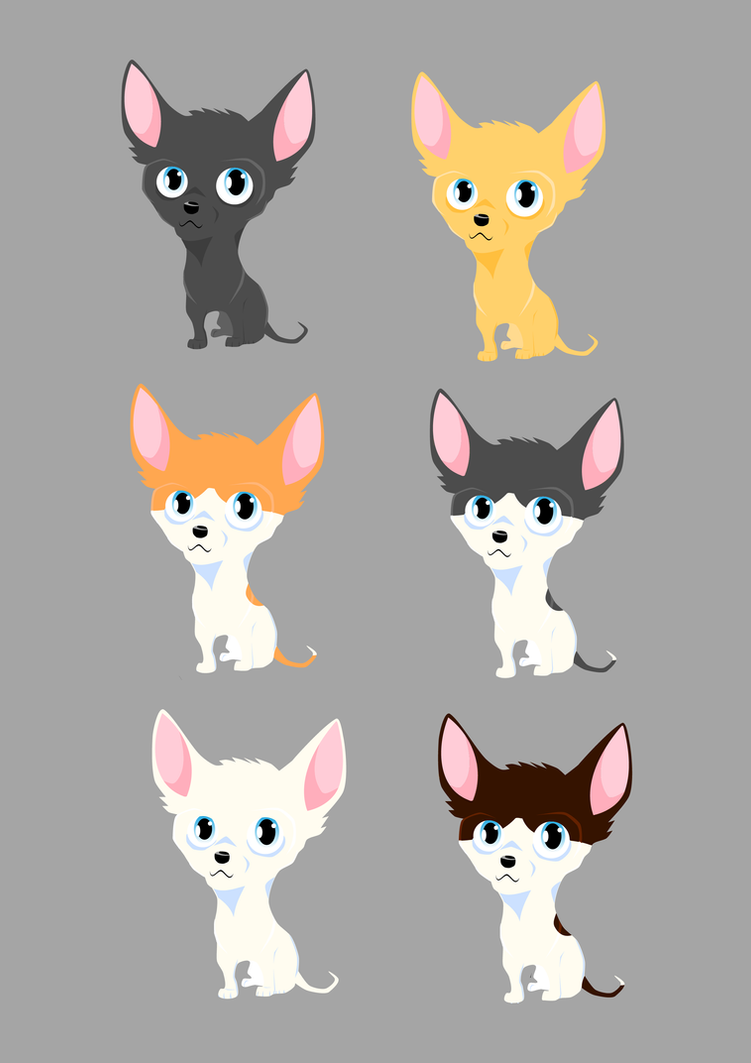 Chihuahua's by GSimonC