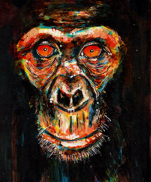 Chumpy Chimp by GregoryStephenson