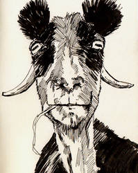 Panda Goat by GregoryStephenson