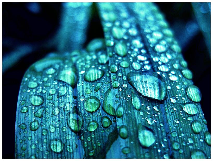 Aqua by magic-spelldust