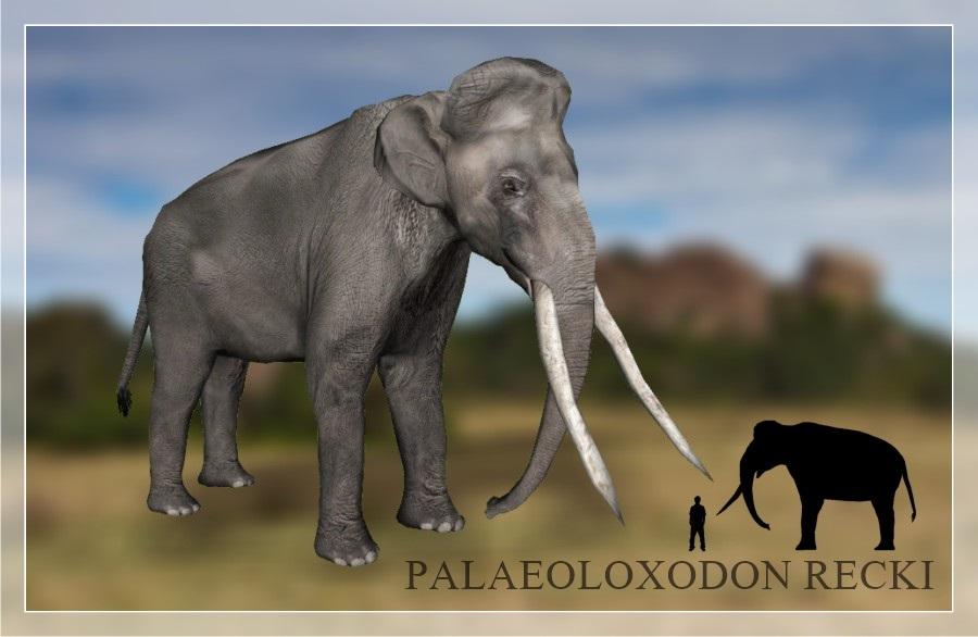 zoo tycoon 2 extinct animals cracked