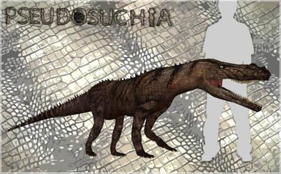 Pseudosuchia - Decuriasuchus quartacolonia