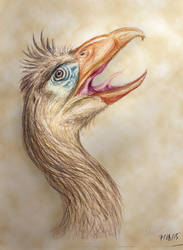 Magnificent Terror Bird