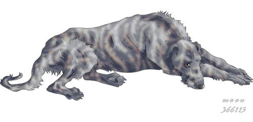 Scottish deerhound by Elkmoose