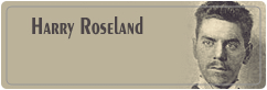 Harry Roseland هری روزلند