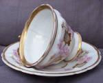 Teacup Stock12