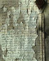 Dear Hermine Grunge Texture by ValerianaSTOCK