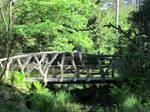 ValerianaSTOCK Elven Bridge