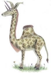 Doublehorned Giraffecamel
