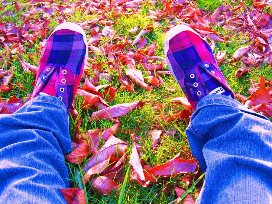 I Really Like These Shoes