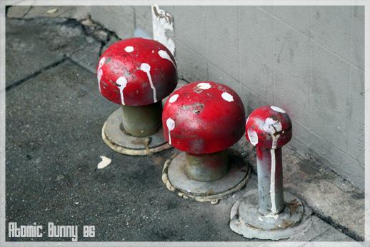 Mushrooms by Atomic-Bunny