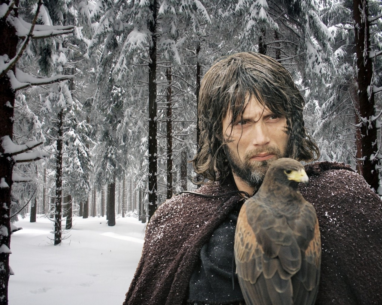 King Arthur Movie Gawain