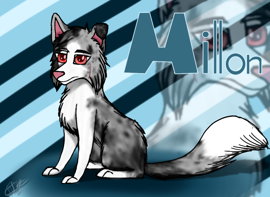 Millon Huskollie by Akeela-Quill
