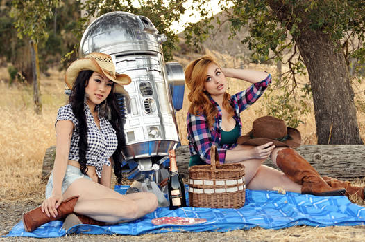 Hillbilly Picnic with R2D2
