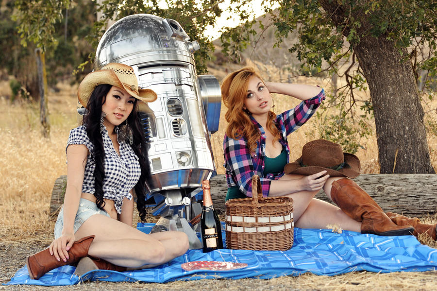 Hillbilly Picnic with R2D2 by VampBeauty