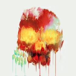 Skull art by anjosdg