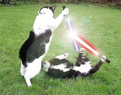 use teh force,kat 1 by bronzethehedgehog
