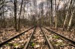 Railway-To-Nowhere-Winter-Brown