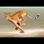 Running cheetah in the savannah.