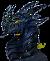 Onyx Dragon by Cizu