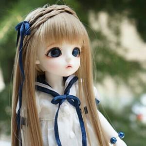 ShineCookie's Profile Picture