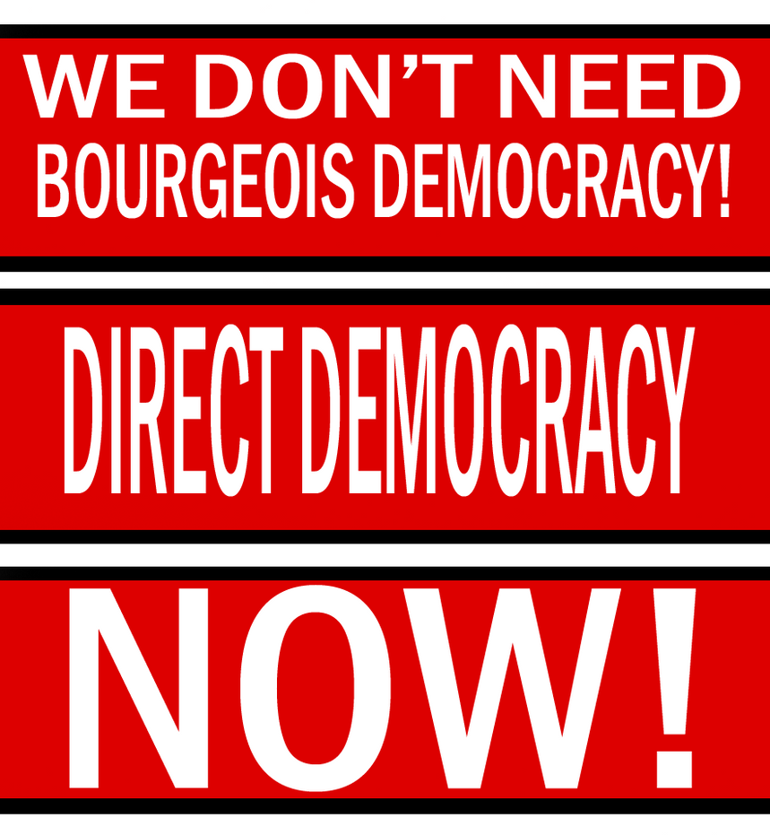 Direct Democracy Now by Party9999999