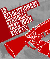 Revolutionary Rights by Party9999999