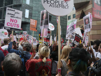 Forest of Placards by Party9999999