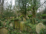 Graves of Ivy