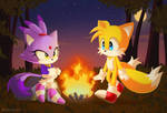 Tails and Blaze    Sonic the hedgehog