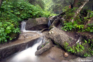 Flowing by uae4u