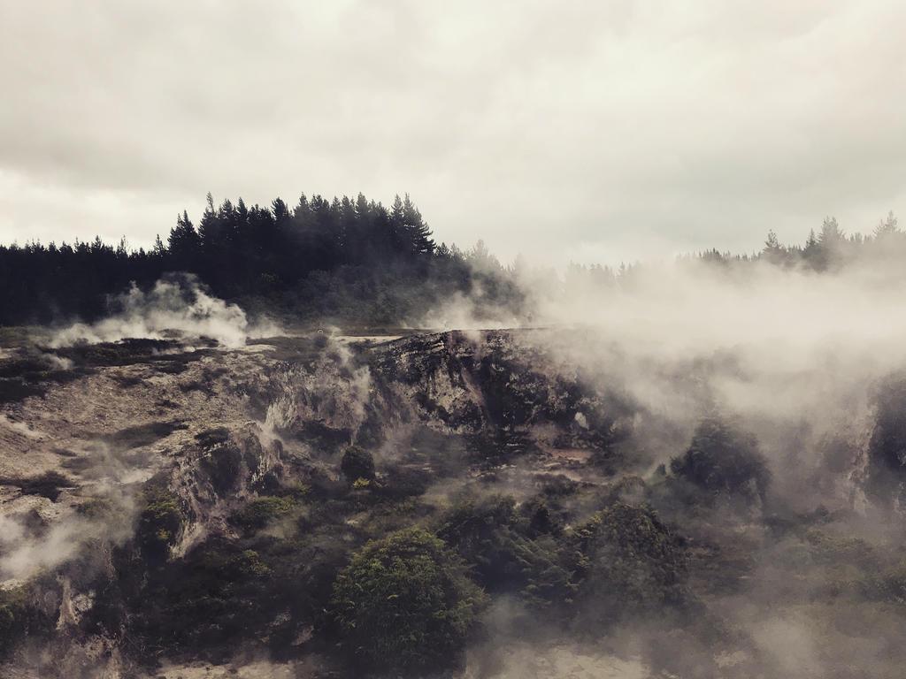 Steam by Paherowa