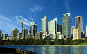 Sydney wide by boding-bunny